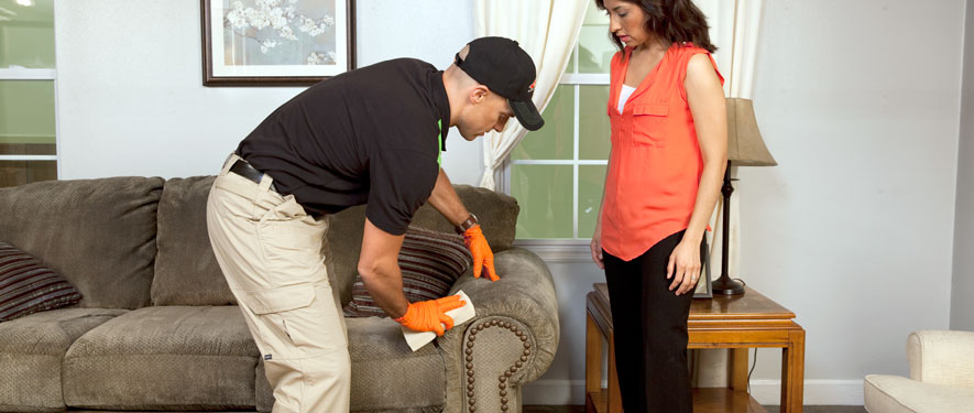 Farmers Branch, TX carpet upholstery cleaning